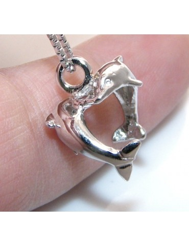 fine silver : Necklace for  woman with   half moon